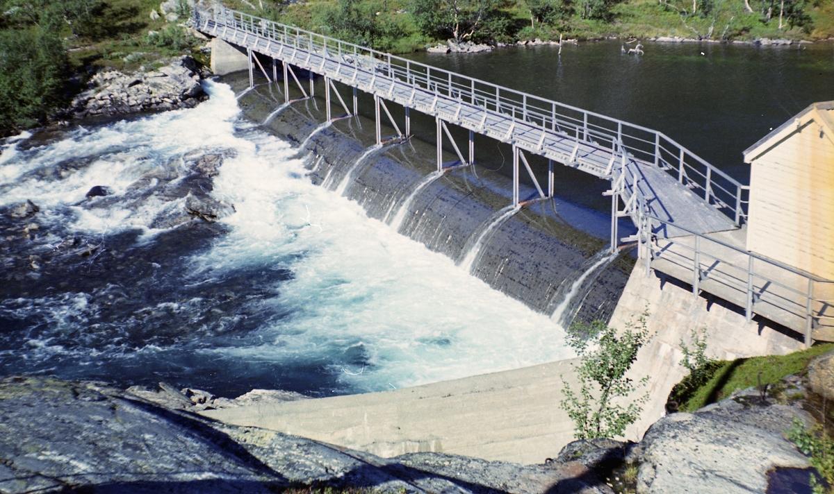 Dammen ved utløpet av Reinungavatnet