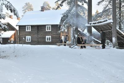 Vintervitt på Odalstunet. Foto/Photo