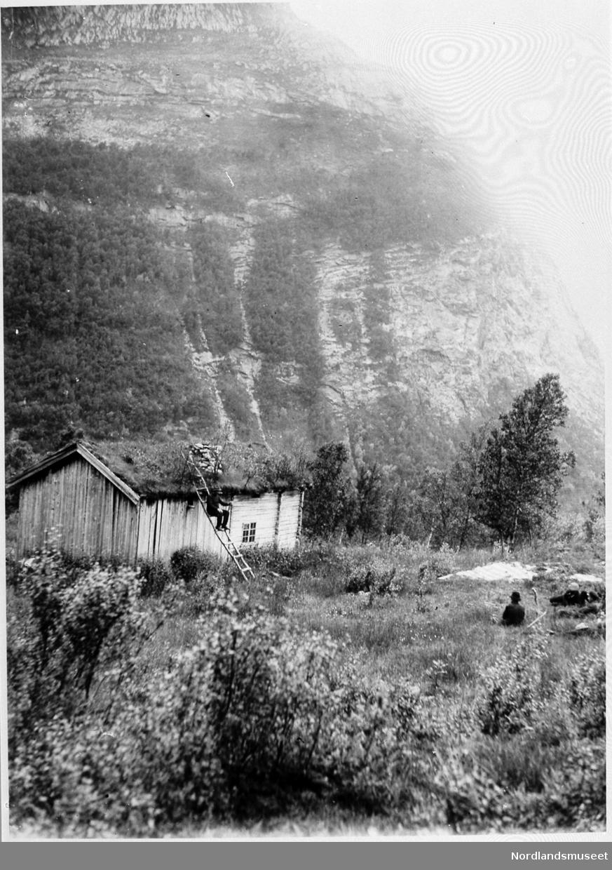 516a91c7 Forsåseter - Nordlandsmuseet / DigitaltMuseum