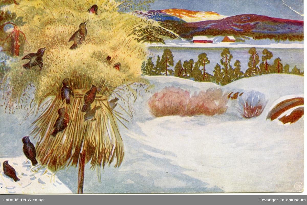 Postkort med vintermotiv, småfugler i kornneket.