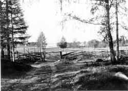 Gravfält vid Hade, Hedesunda.