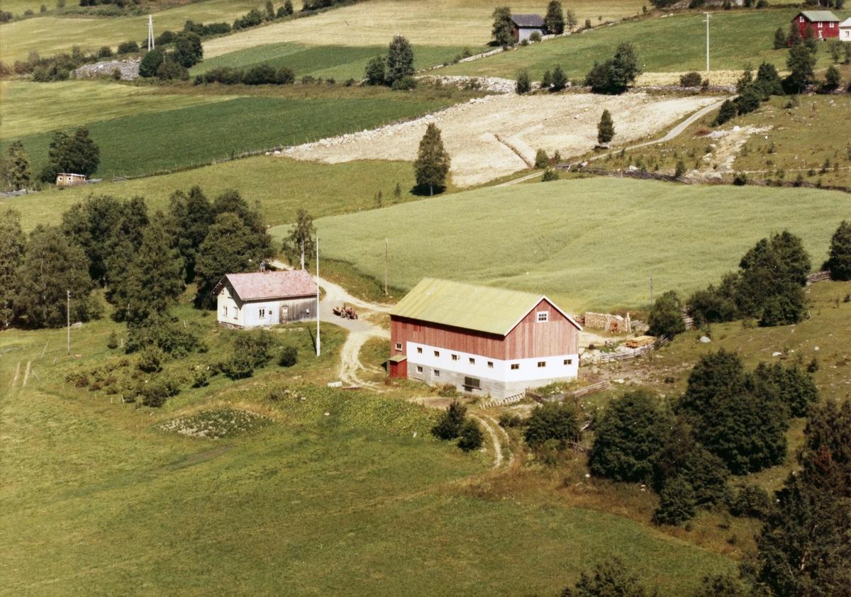 Surnflødt. Gårdsbruk i Follebu. Rødmalt driftsbygning, lite våningshus. Hage med busker og frukttrær.  Kulturlandskap.