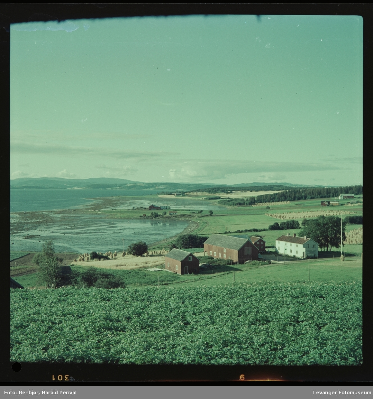 Utsikt ved Nesset i Levanger.