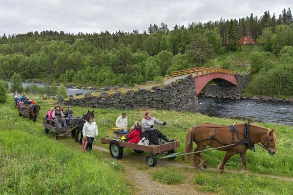 Fløttdagen på Dølmotunet i Tolga 17/6 2016. Opptog gjennom Gata, bildet er tatt ved Gammelbrua over Glomma på Tolga.. Foto/Photo