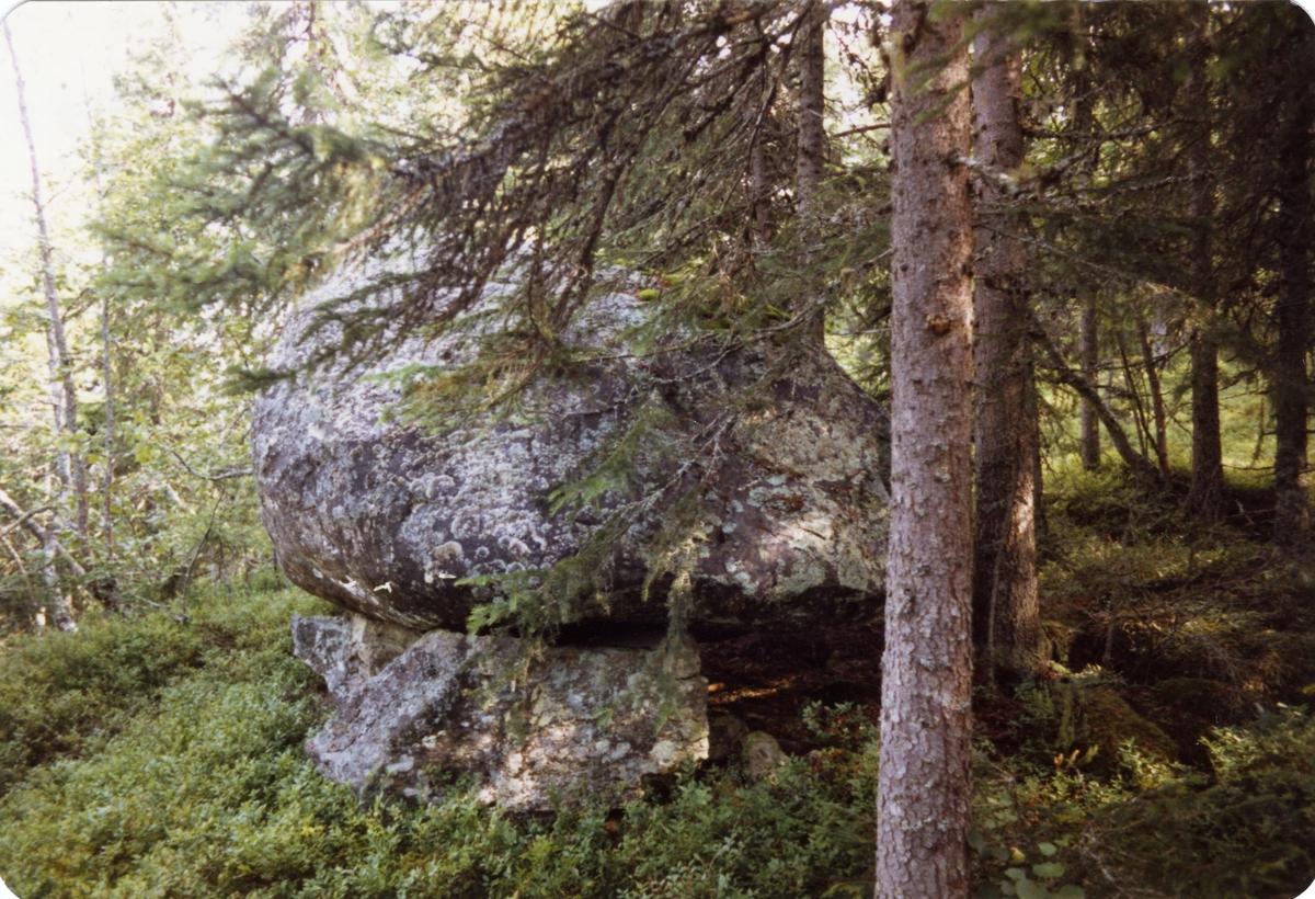En stor stein liggende i en skog. Steinen var trolig dele mellom Dølvesgodset og Brattrud, Sør-Aurdal.