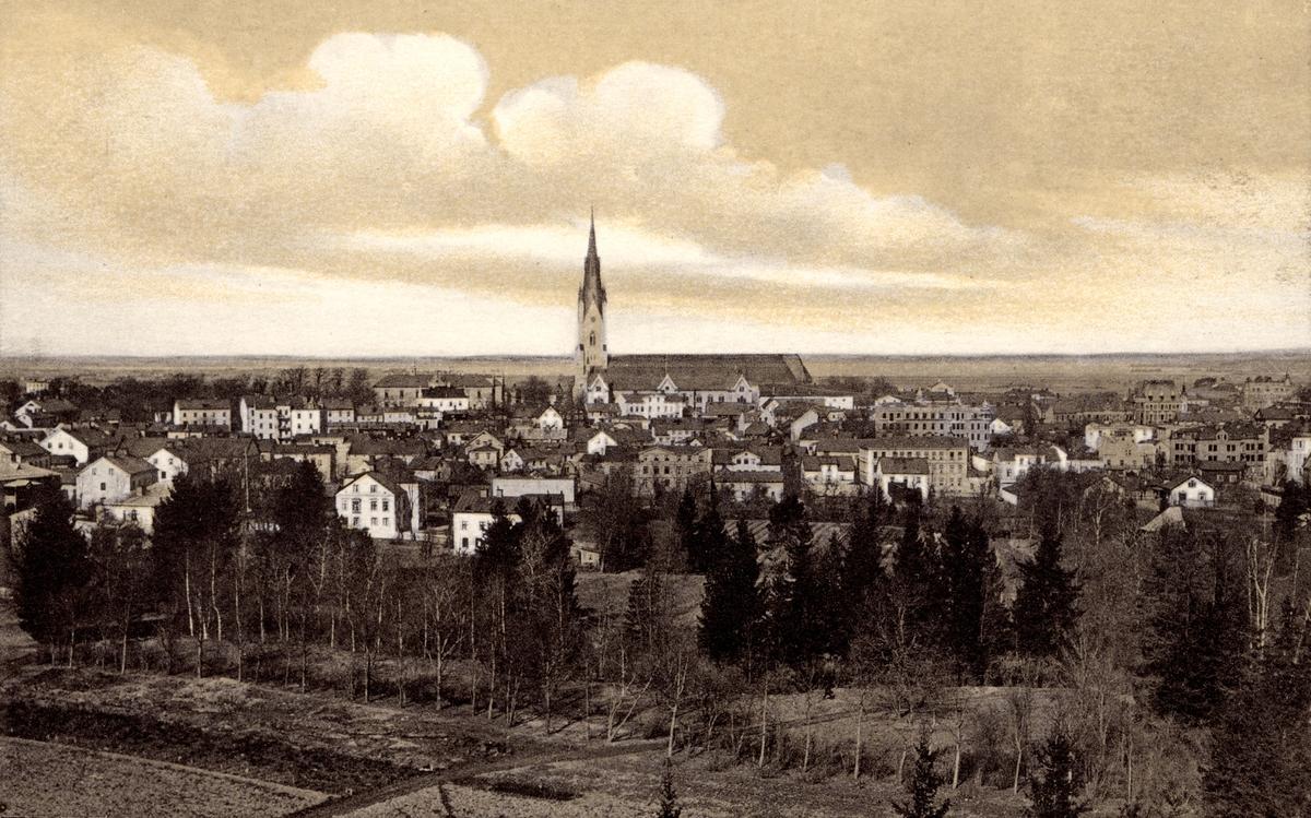Linköping mot norr, med Domkyrkan i centrum.Bilden är troligen fotograferad från Belvederen i Trädgårdsföreningen.Linköpings Trädgårdsförening, anlades 1859 av ett bolag på ett av Serafimerordensgillet arrenderat område. Den välskötta anläggningen utvidgades 1871 och är upplåten för allmänheten mot det att staden till bolaget årligen erlägger ett belopp av 300 rdr.  Uppdaterad extern information 20170913: Fotografiet är från år 1906 enligt två byggnader som är under uppförande i bilden.