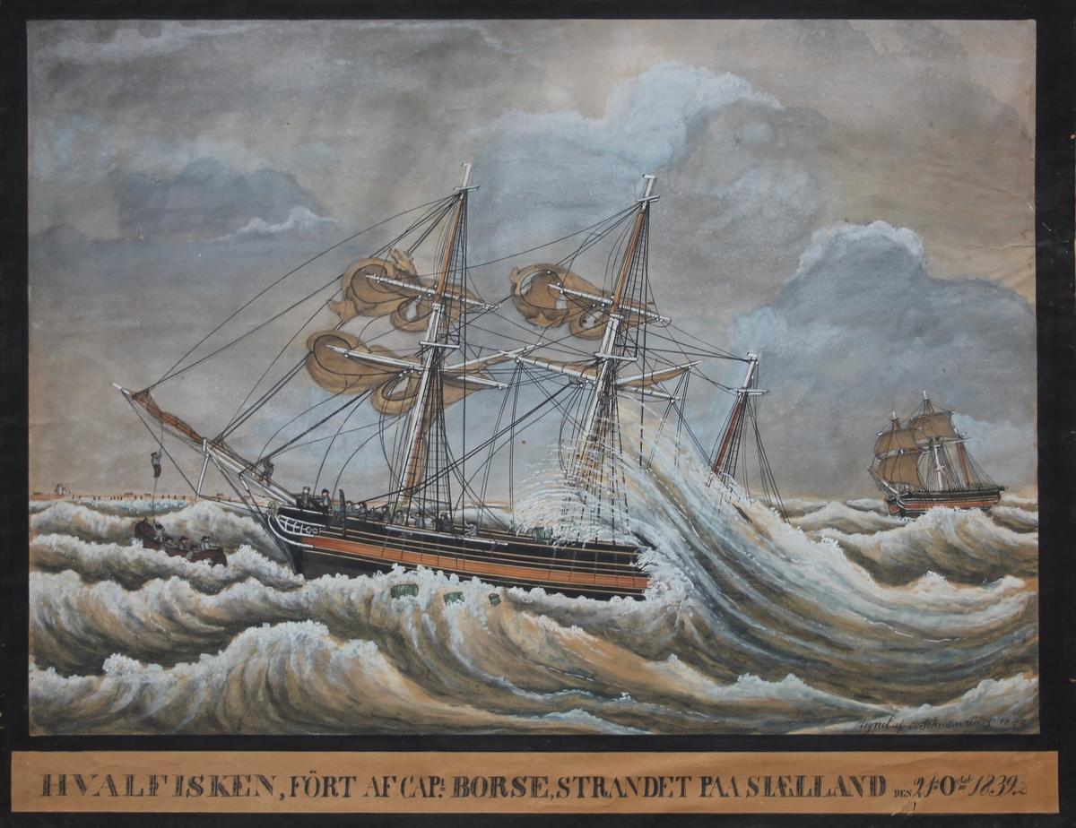Mannskapet på bark HVALFISKEN iferd med å gå i livbåten etterat skipet strandet på Sjælland. Høye bølger og land i det fjerne.