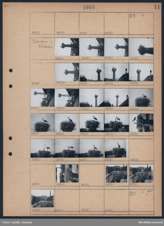 Motiv: Storkar, Holstebro; Stork i ett storkbo på en hög skorsten, storkbo med stad i bakgrunden.
