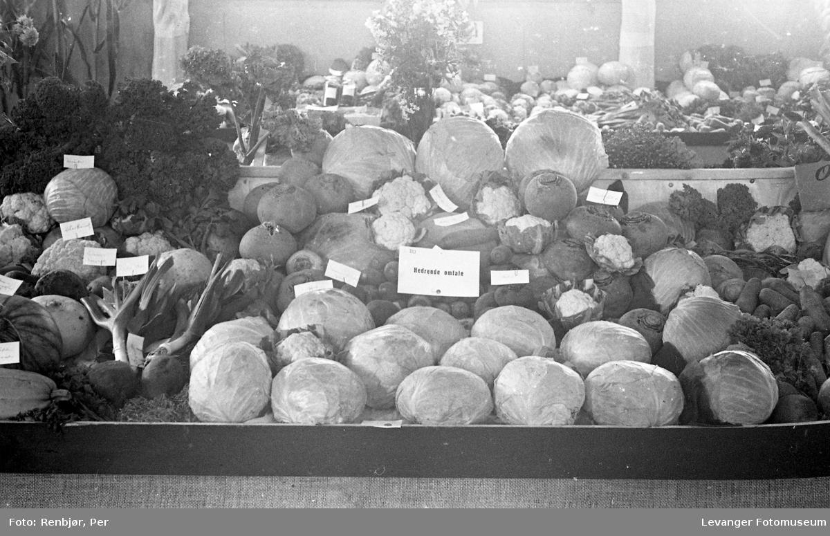 Fra utstillingen om høsten under byjubileet i 1936, grønnsaker merlet hedrende omtale.