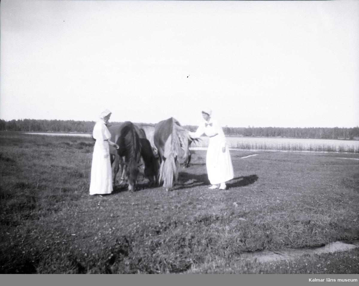 Två damer med några hästar i närheten av Tuna gård.