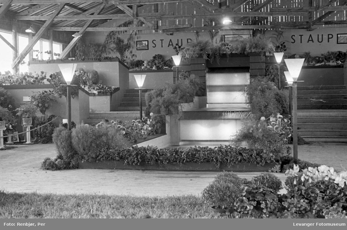 Fra utstillingen om høsten under byjubileet i 1936, Staup hagebruksskole.