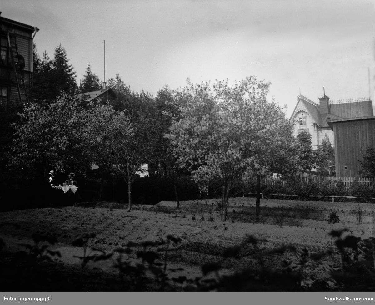 Trädgård, bostadshus. Till höger skymtar huset på Ludvigsbergsvägen 1 i Stadsbacken.