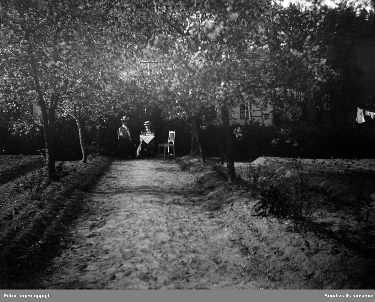 Villaträdgård, troligen efter Ludvigbergsvägen.