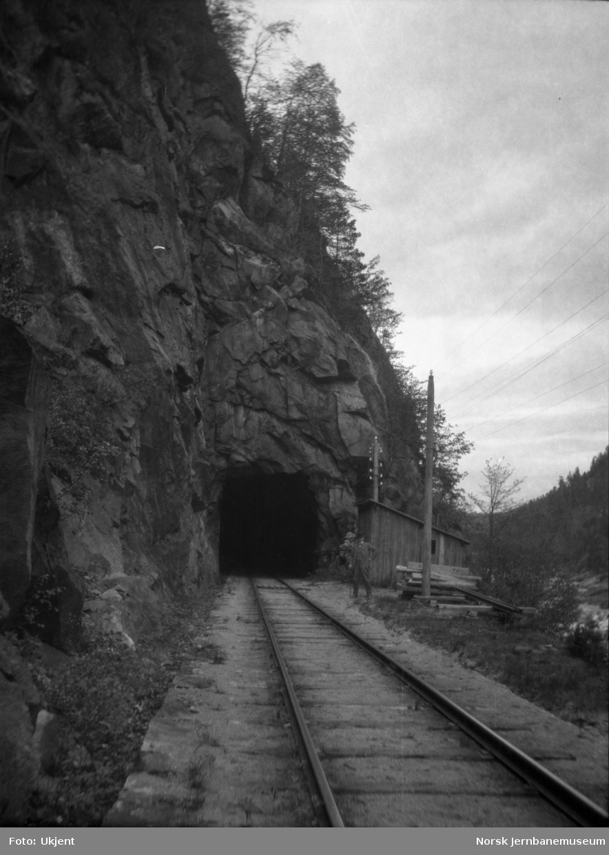 Løyning tunnel, søndre inngang med banebu