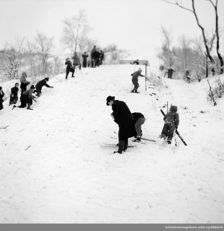Ola Narr.Skibakken og renn.1948