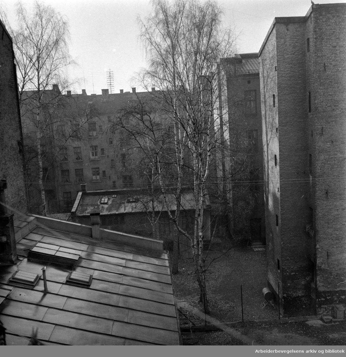 Grünerløkka, Gamle gårder- og bakgårder. Saneringer. .Trange gårdsplasser på Grünerløkka. November 1957