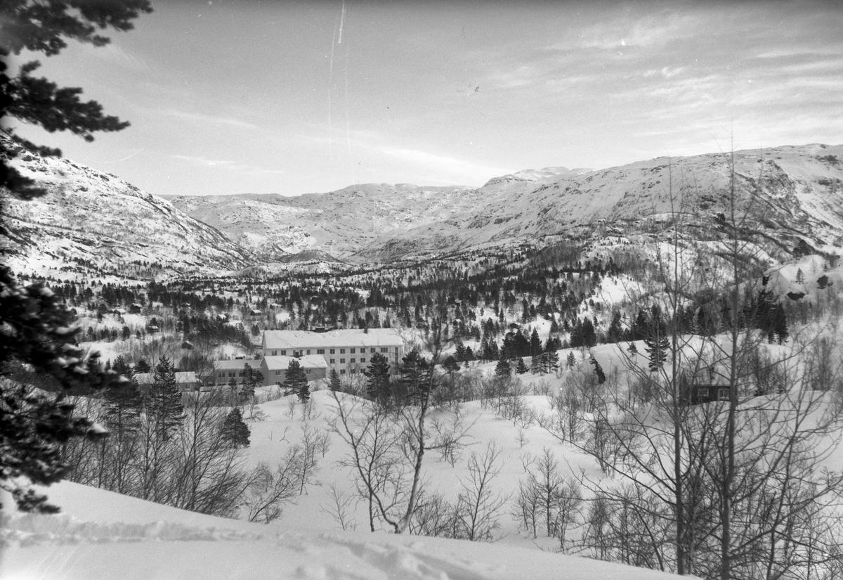 Vinter, snø, fjell, hotell, Solfonn Hotell