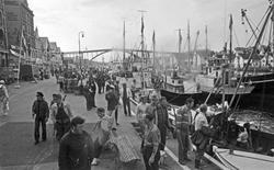 Nordsjøfestivalen i Haugesund. Deltagere og fiskebåter ved k