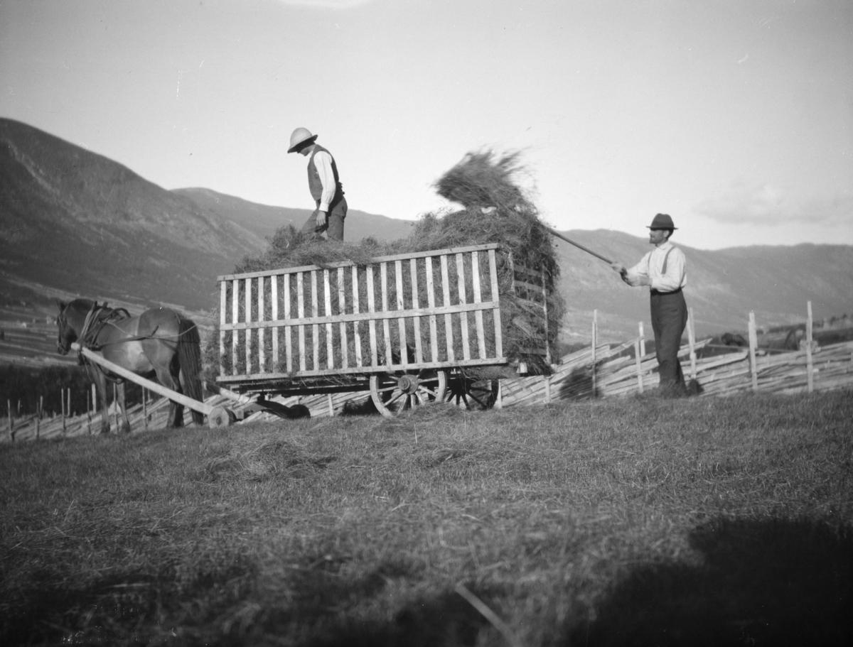 To menn laster høy på høyvogn med hest