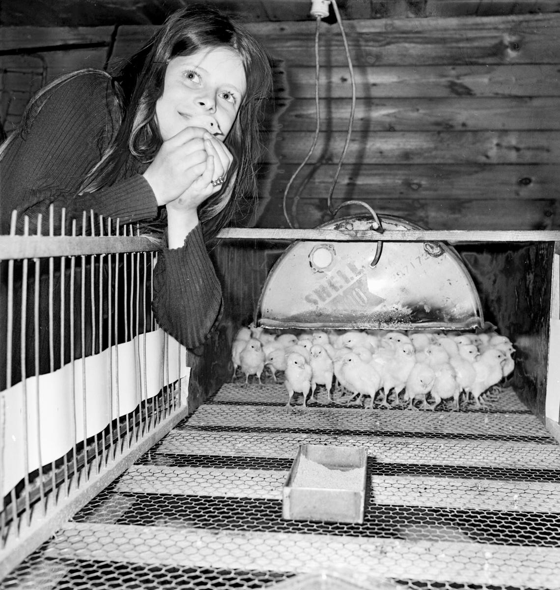 Utomskogen, Yvonne Eriksson o Ingvar Persson, April 1972