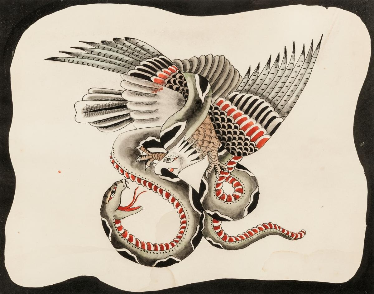 Tatueringsbild som avbildar en örn och en orm, i storlek 31 X 23 cm.