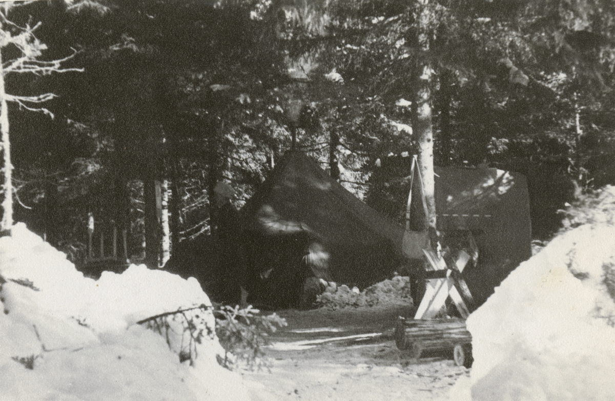 Bivack i skogen.