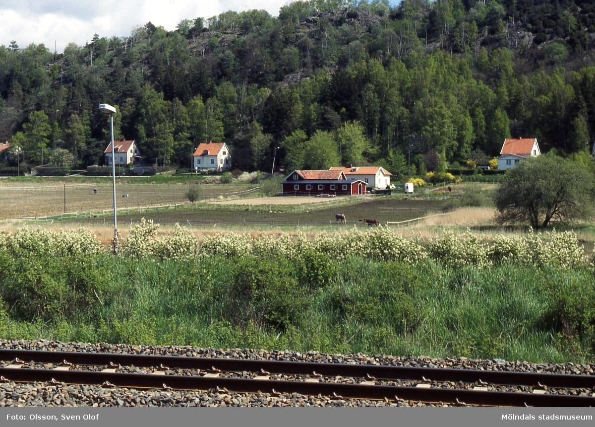 Vy över järnvägen mot gården Hjorthall i Brännås, Mölndal, som har blivit hästgård, juni 1995.