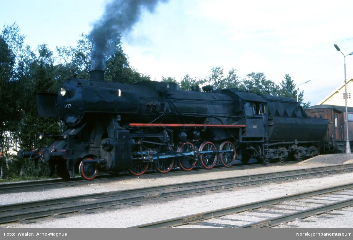 Damplokomotiv type 63a nr. 3437 foran dagtog 301 på Røros stasjon