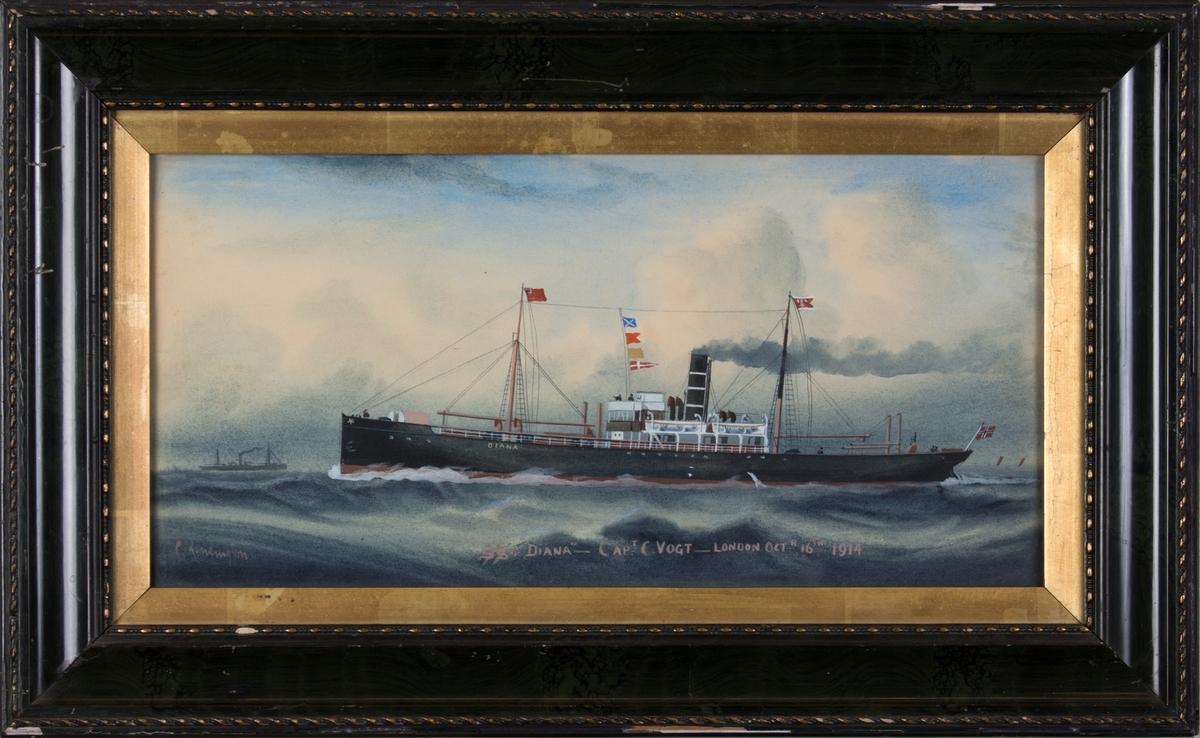Skipsportrett av DS DIANA i rom sjø. Skipet har norsk flagg i akter, og fører kjenningssignal MBQF, og BDS rederiflagg. I horisonten til venstre et mindre dampskip.