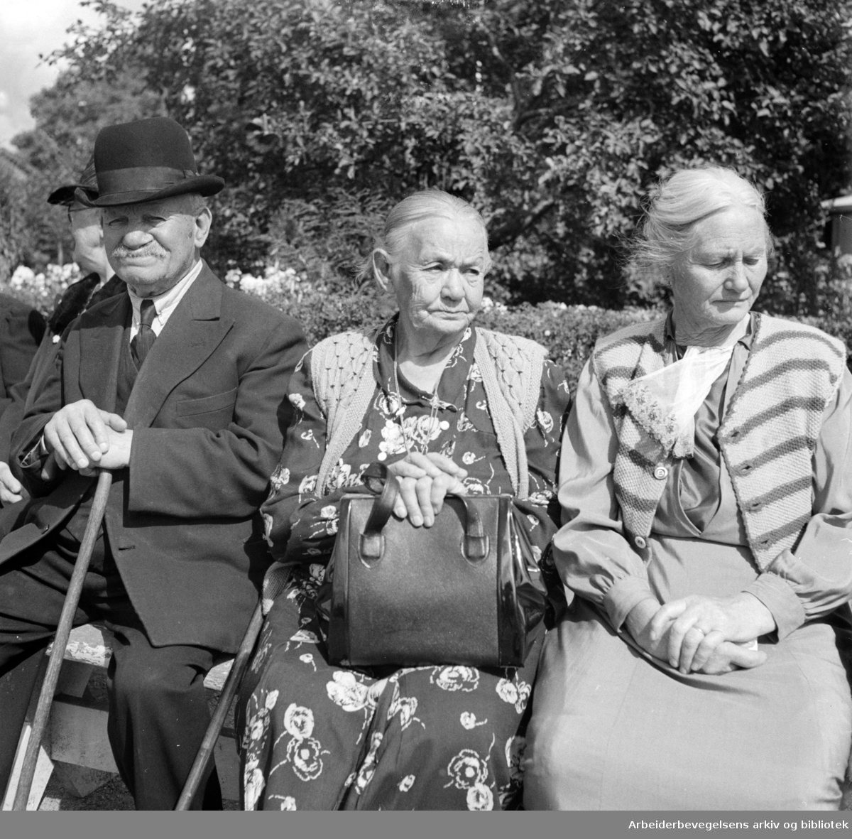 Tøyen Hagekoloni. August 1948