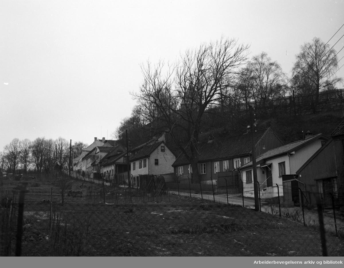 Telthusbakken. Desember 1953