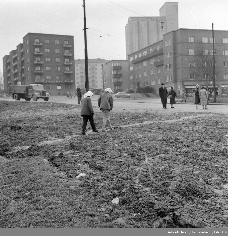 Torshovdalen park. Dårlig vei fra Åsen til Sinsen. April 1959