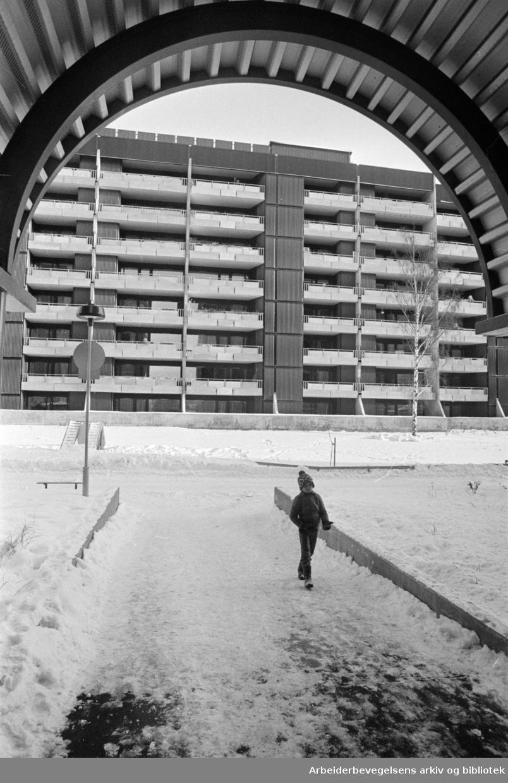 Sandaker senteret. Februar 1978