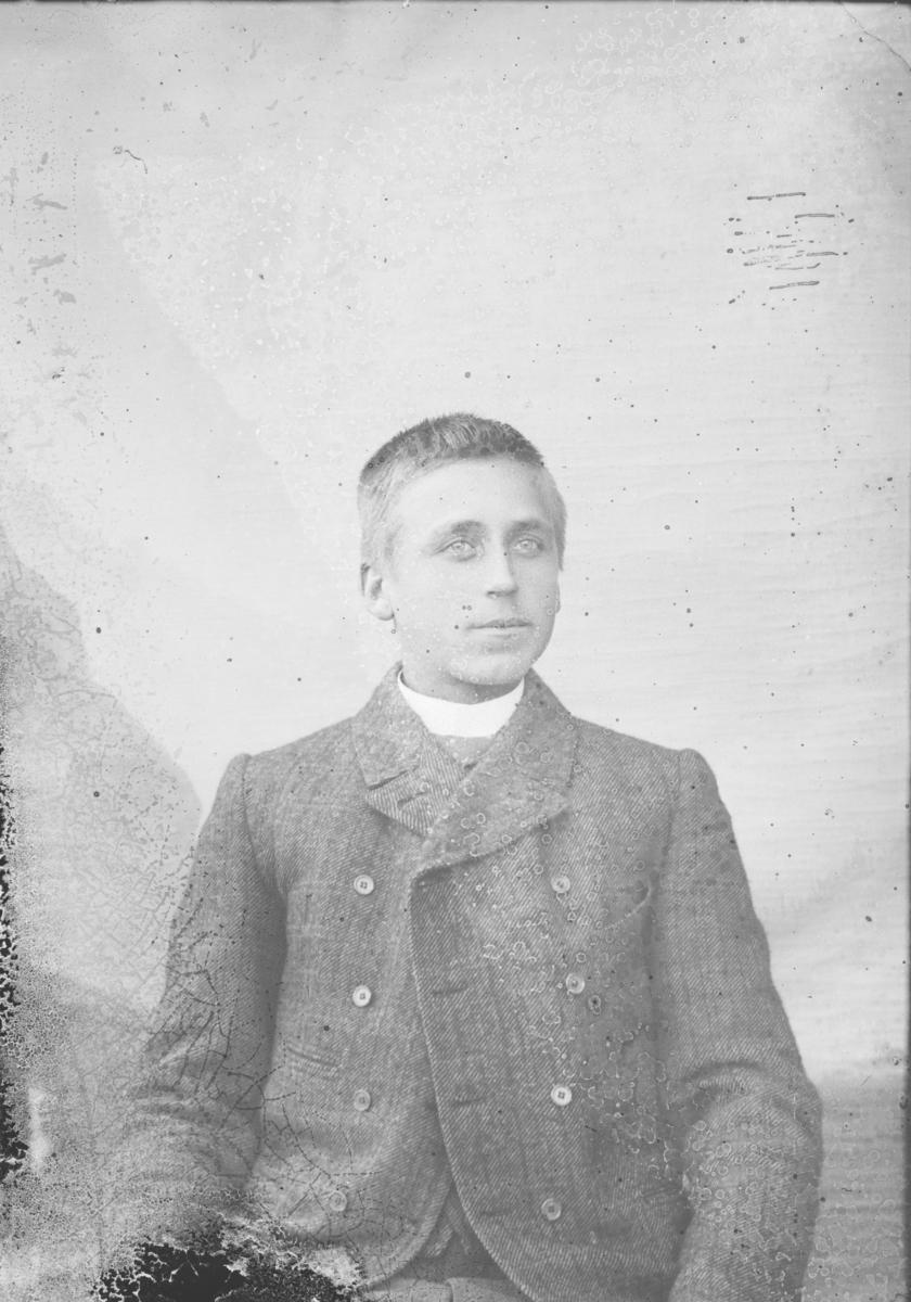 Portrett, mann sitter, brystbilde