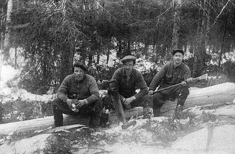 Holger, Allan och Johan Eriksson, Nyskoga F.12-6-1909, D. 25-8-1983. Johan flyttade till Hällefors, där han bodde i många år och arbetade i fabrik fram till pensionen.
