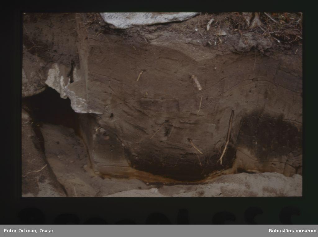 Norum 140:1,  profil I den NV-SO-profilen kan man urskilja en nedgrävning, till gravgömma 1, som tydligen säckat ihop.