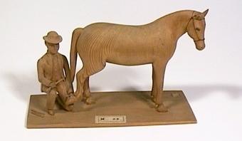 Manlig hovslagare och häst.