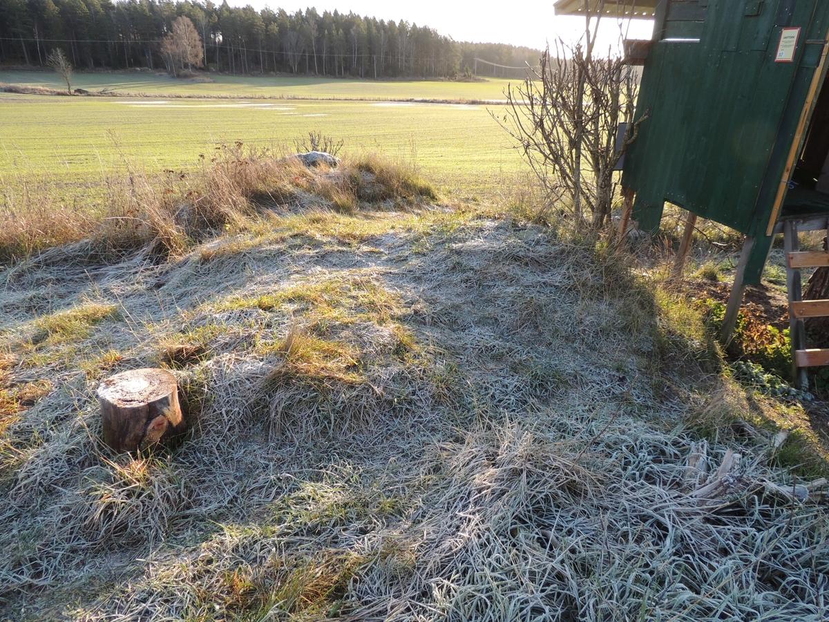 Arkeologisk utredning, objekt 10, A133, spisröse, Husby, Markims socken, Uppland 2017