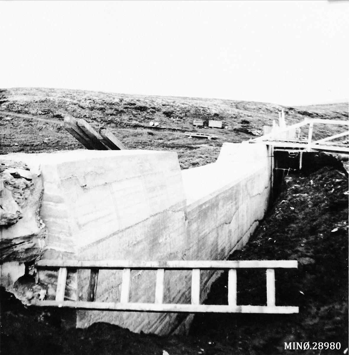 Elgsjødammen. Kraftstasjonens vannmagasin (samt Marsjøen)