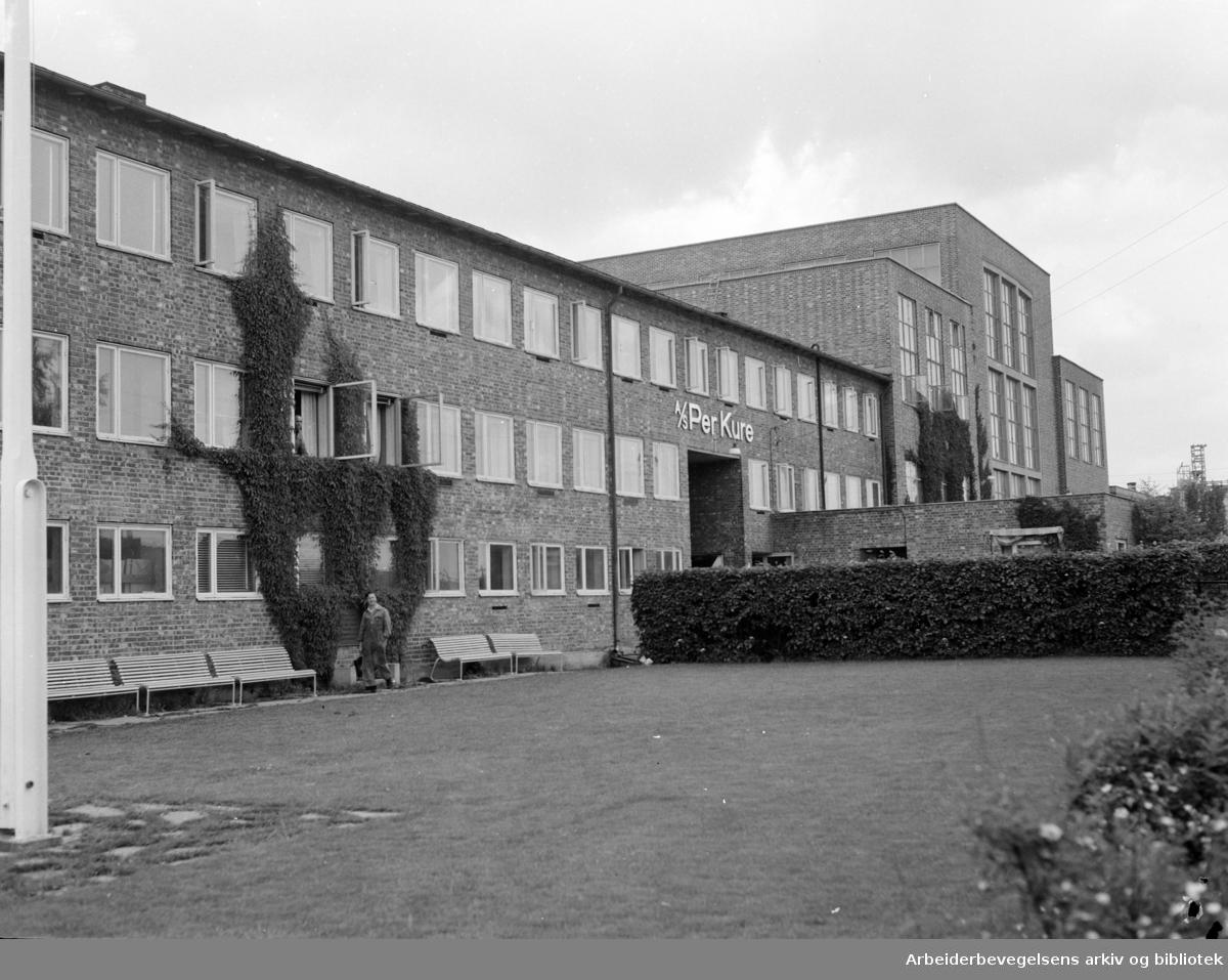 Per Kure Transformatorfabrikk. Parkanlegget. Juli 1955