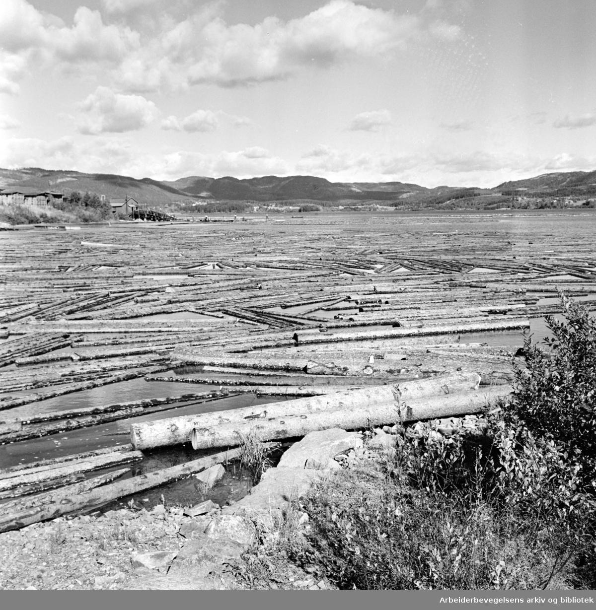 Maridalen: Maridalsvannet: Løvenskjold-Vækerøs sagbruk..Reportasje om drikkevanns-forurensing. September 1961
