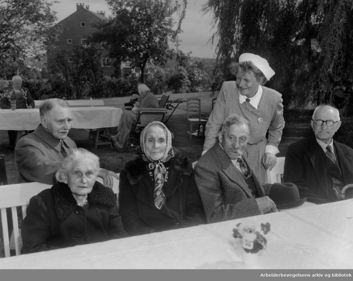Lille Tøyen sykehjem. Hagefest for pasientene. Juni 1954