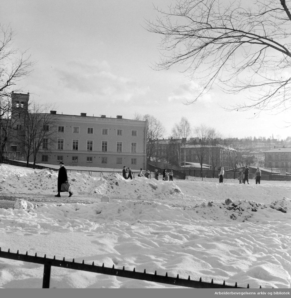 Klosterenga på Kampen etter at brakkene er revet..Januar 1958