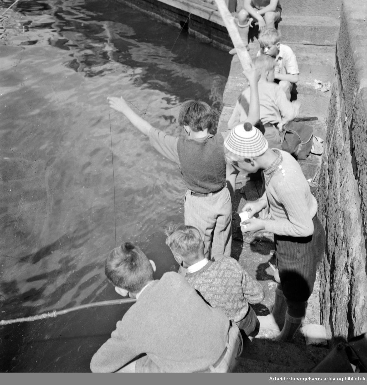 Havna. Bryggefiskere. Juli 1950