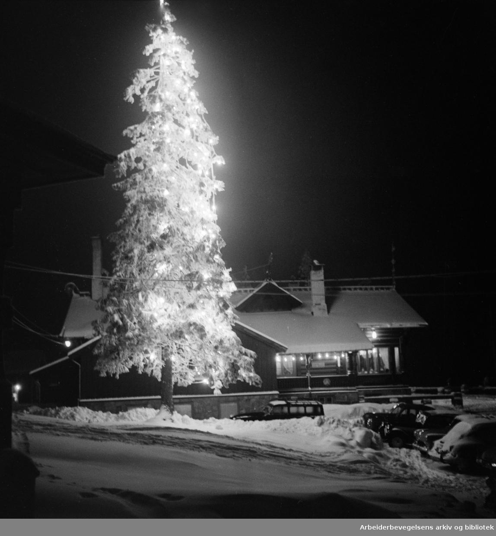 Frognerseteren i kveldslys. Januar 1956