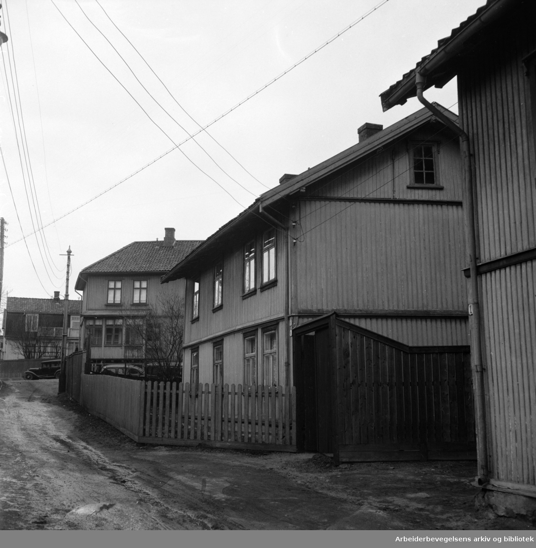 Evensgate (Privat gate). April 1956