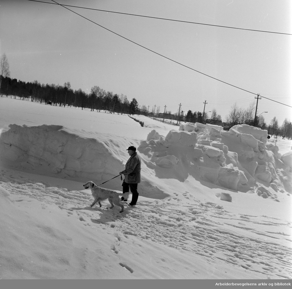 Ekeberg. Ekebergfeltene venter på vårsmelting, men det skal bli klart til 7. mai, mener driftsbestyrer Per Jaabæk i Idrettsvesenet. April 1966
