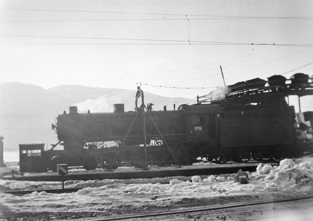 Damplokomotiv type 31b nr. 426 ved kulldepotet på Bergen stasjon.
