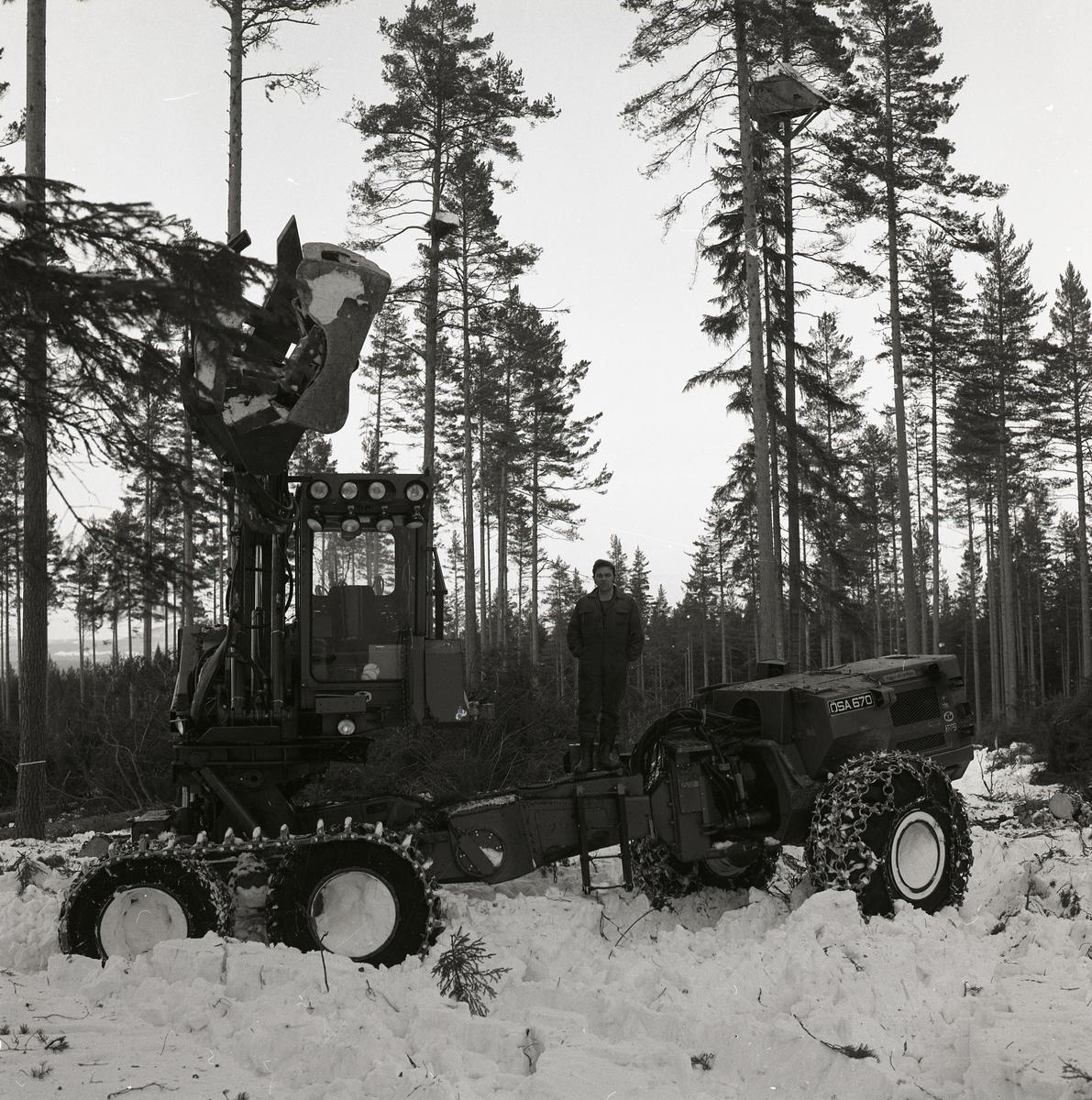 En man är ute i skogen med skogsmaskin och kör timmer.