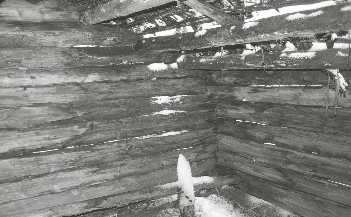Koier Sør-Trysil. Verksted Koll Granli. 110/117